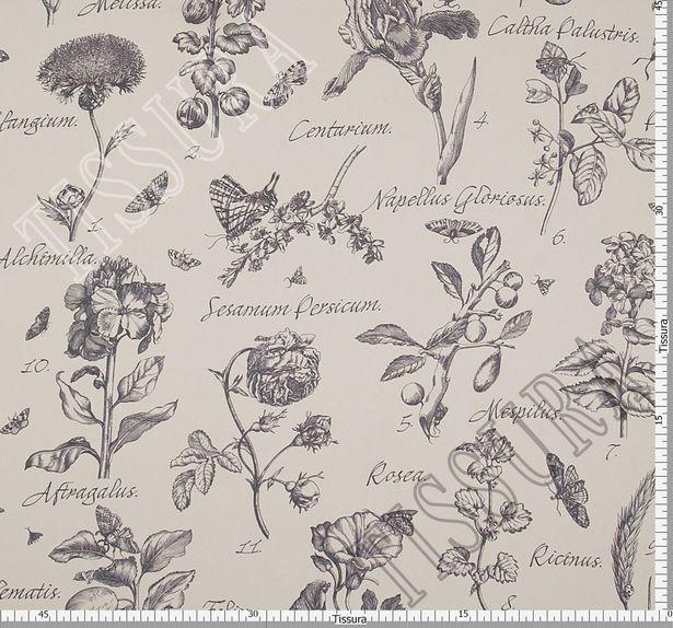 Итальянский жоржет из 100% шелка: принт графические изображения цветов с указанием их латинских названий #3